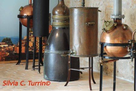 Grasse - alambicchi distillatori