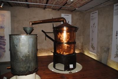 Salagon - esposizione dedicata alla lavanda